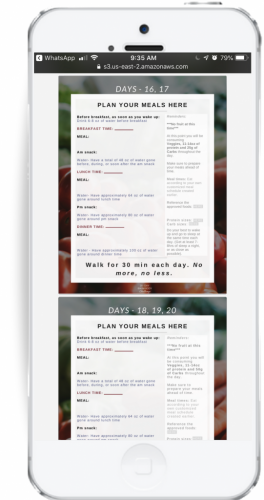 Meal plans for sales page phone view